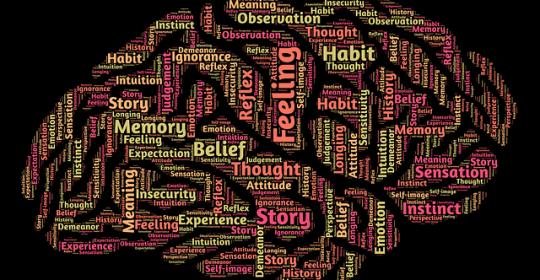 Neurociencia y la Felicidad